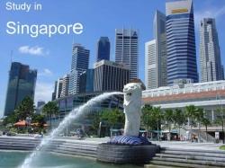 Nên chọn ngành gì khi du học Singapore?