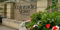 Trường Colorado State University(CSU)