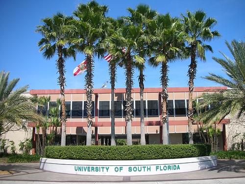 University Of South Florida - Top Trường Đại Học Hàng Đầu Thế Giới